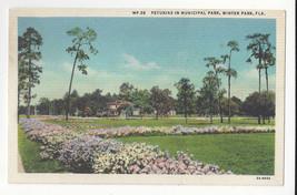 FL Winter Park Petunias Municipal Garden Vtg Postcard - $6.36