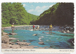 Fishing Pennsylvania Mountain Stream 1977 4X6 Postcard - $5.69
