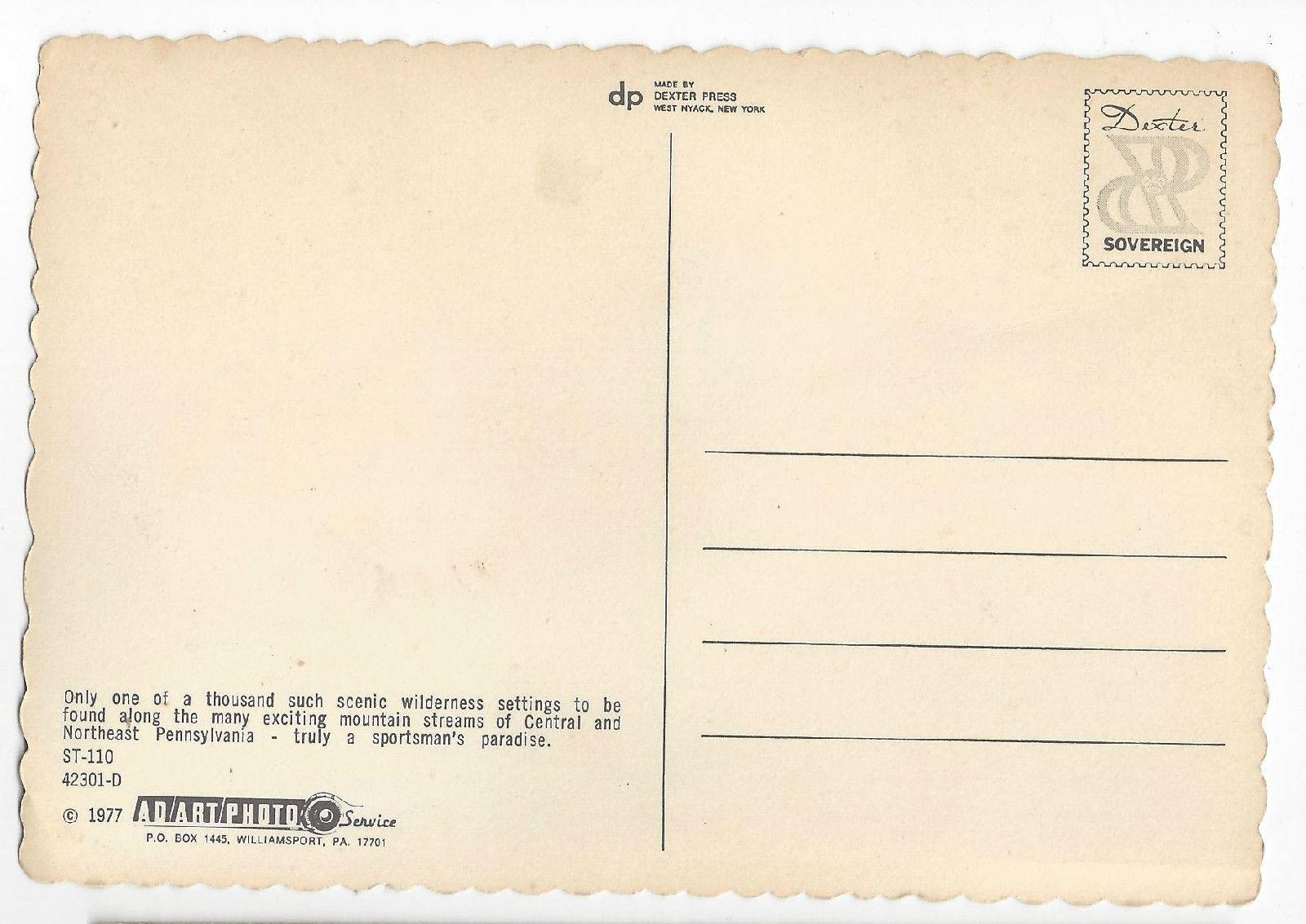 Fishing Pennsylvania Mountain Stream 1977 4X6 Postcard