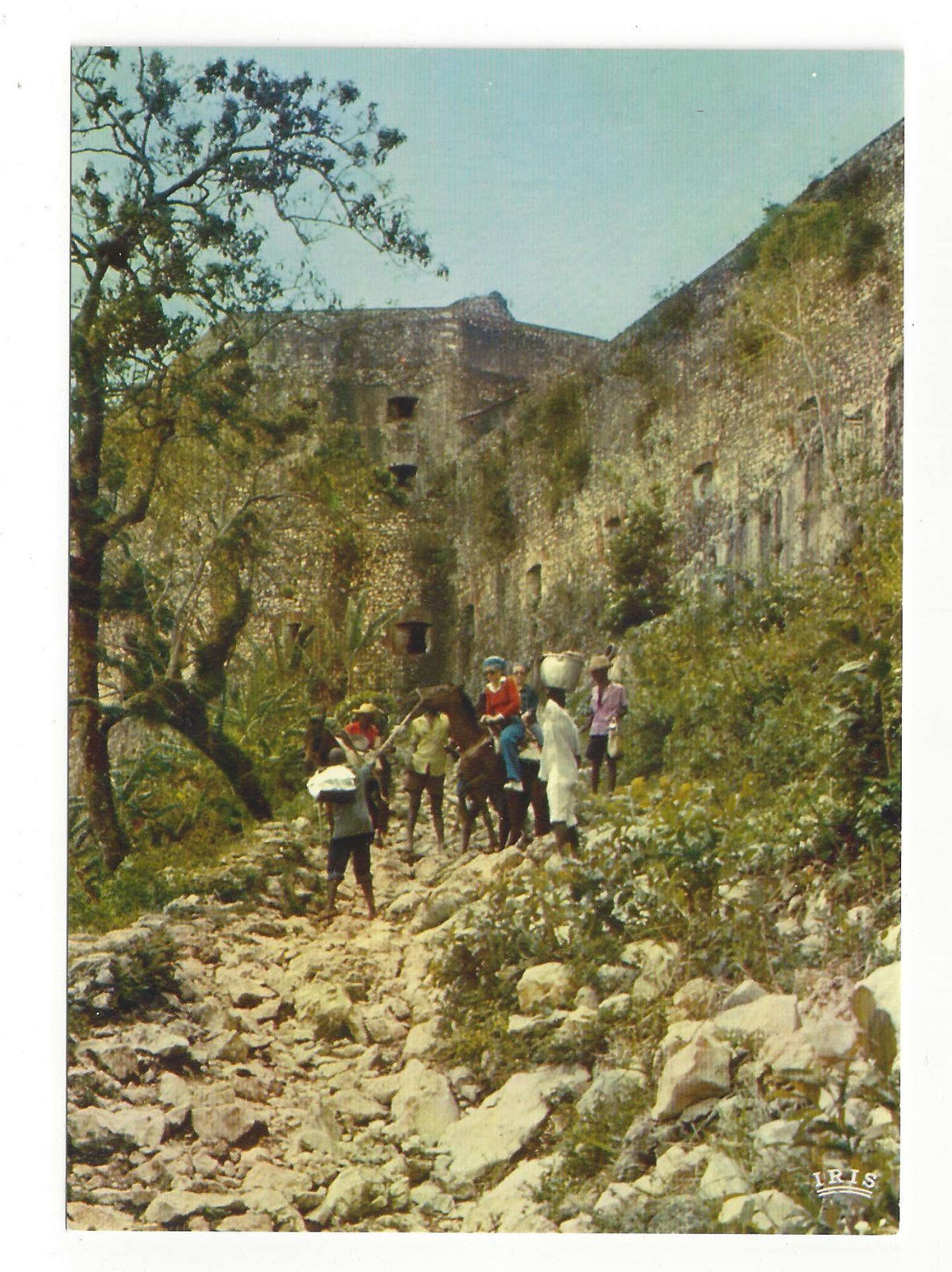 Haiti Citadel La Ferriere Horse Back Trail Caribbean Vtg Postcard 4X6