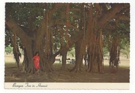 Hawaii Banyan Tree Vtg Chrome Postcard 4X6 Ted Birckhead Photo - $6.36