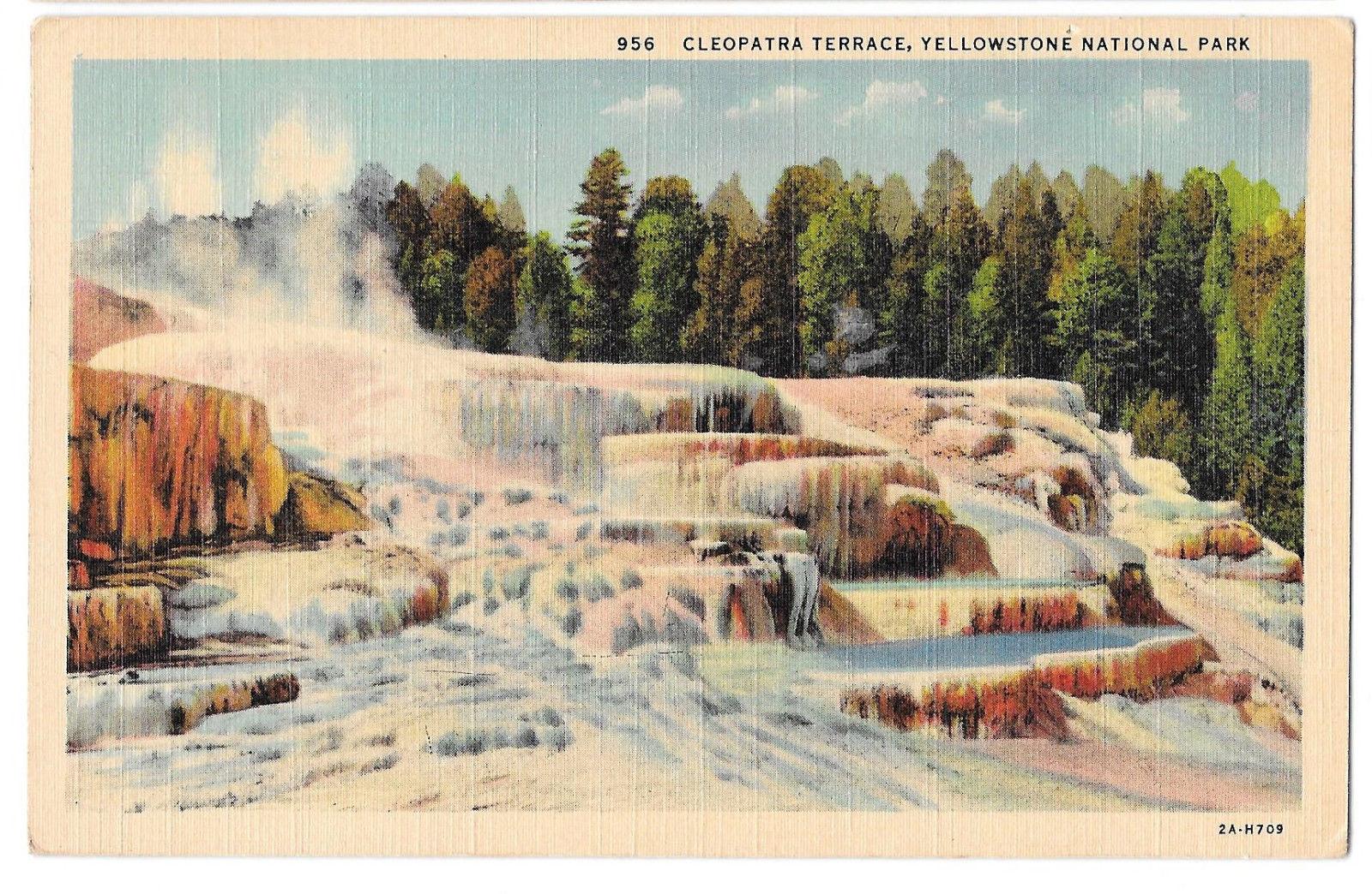 WY Yellowstone Cleopatra Terrace Mammoth Hot Springs Vtg Haynes Linen Postcard