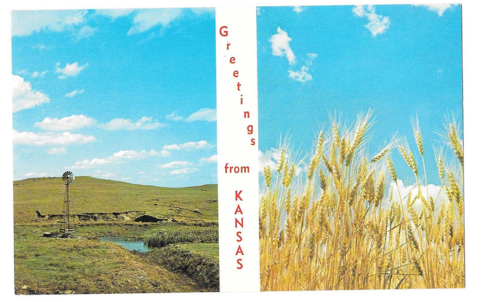 KS Greetings from Kansas the Wheat State Vtg Postcard Farming