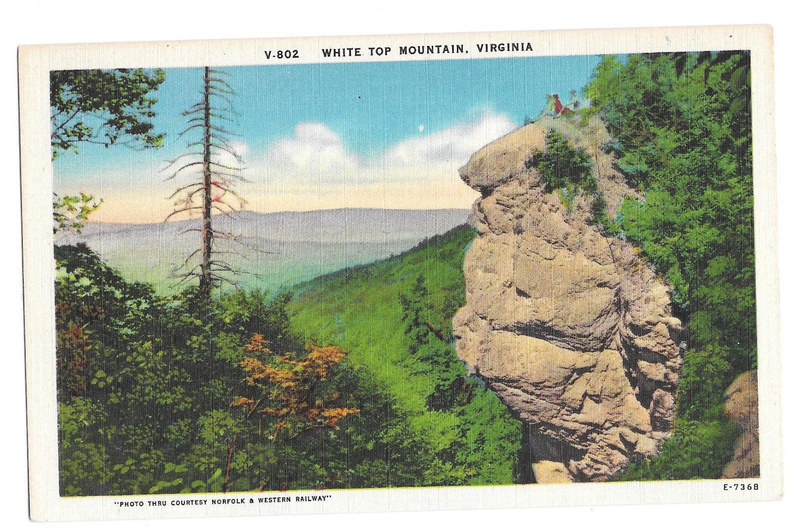 VA White Top Mountain Vtg Linen Postcard Virginia