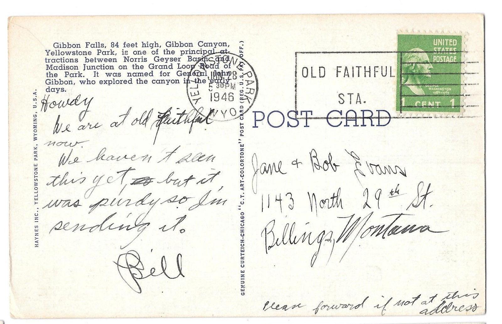 WY Yellowstone Park Gibbon Falls Vtg Haynes Linen Postcard Wyoming 1946