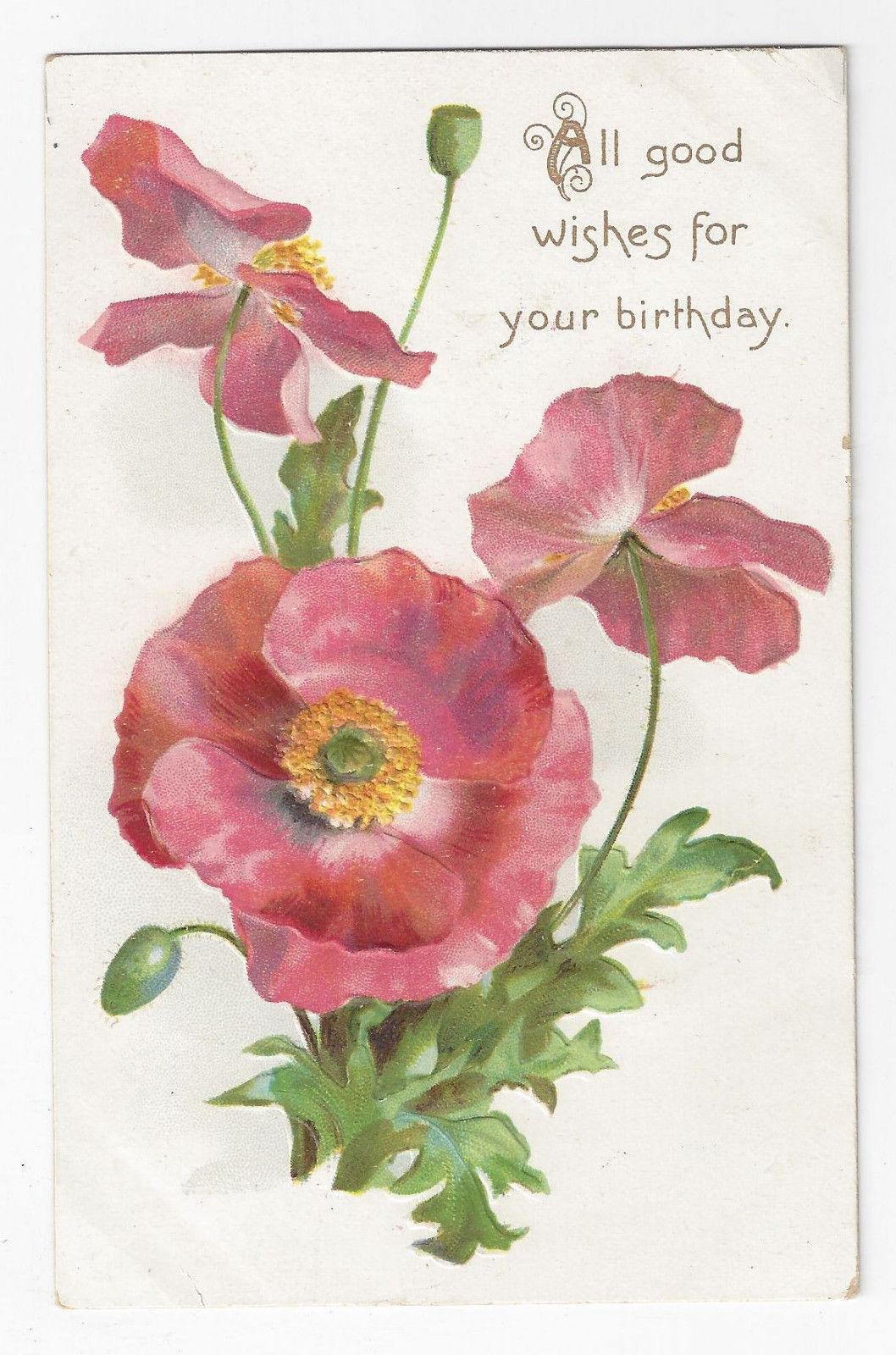 Tuck Birthday Postcard Embossed Poppies Vintage