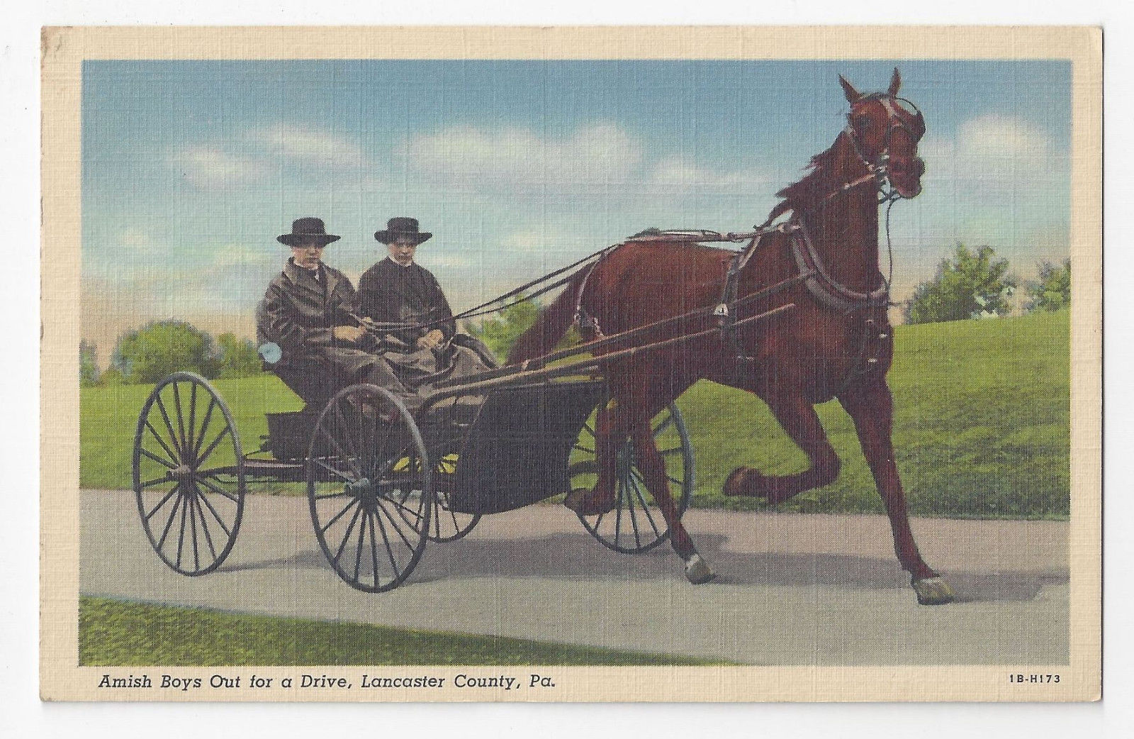 PA Amish Boys Driving Horse and Buggy Lancaster Co Vintage 1941 Linen Postcard