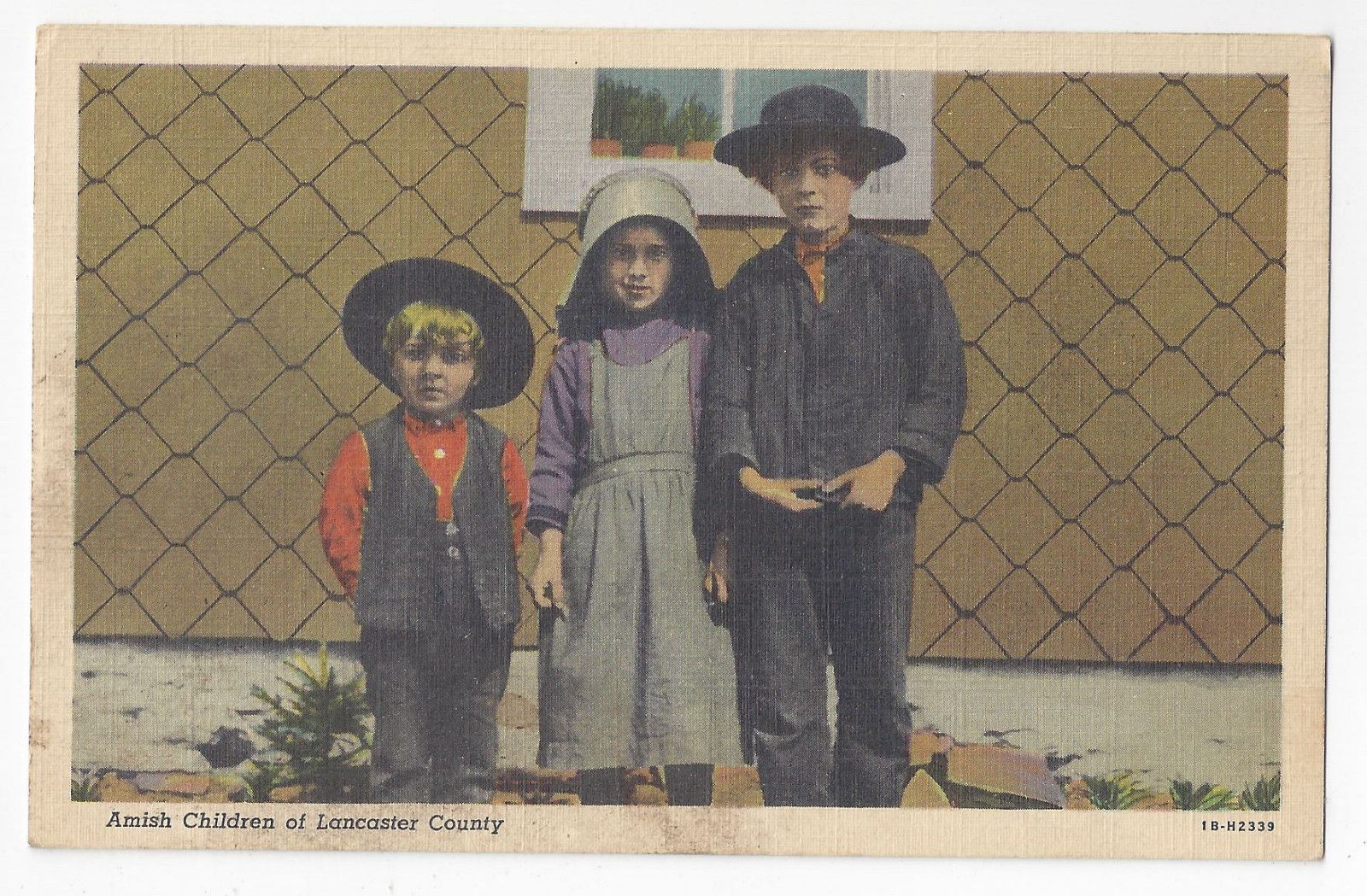 PA Amish Children Lancaster Co  Vintage 1941 Linen Postcard