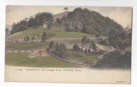 Pittsfield MA Constitution Hill Handcolored Rotograph UND ca 1905 Postcard - $7.40