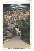 VA Cherokee National Forest Backbone Rock Night Vtg Linen Postcard - $6.36