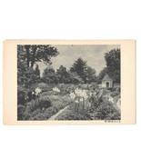 VA Mount Vernon Flower Garden Lilies George Washington Vtg Postcard 1938... - $4.74