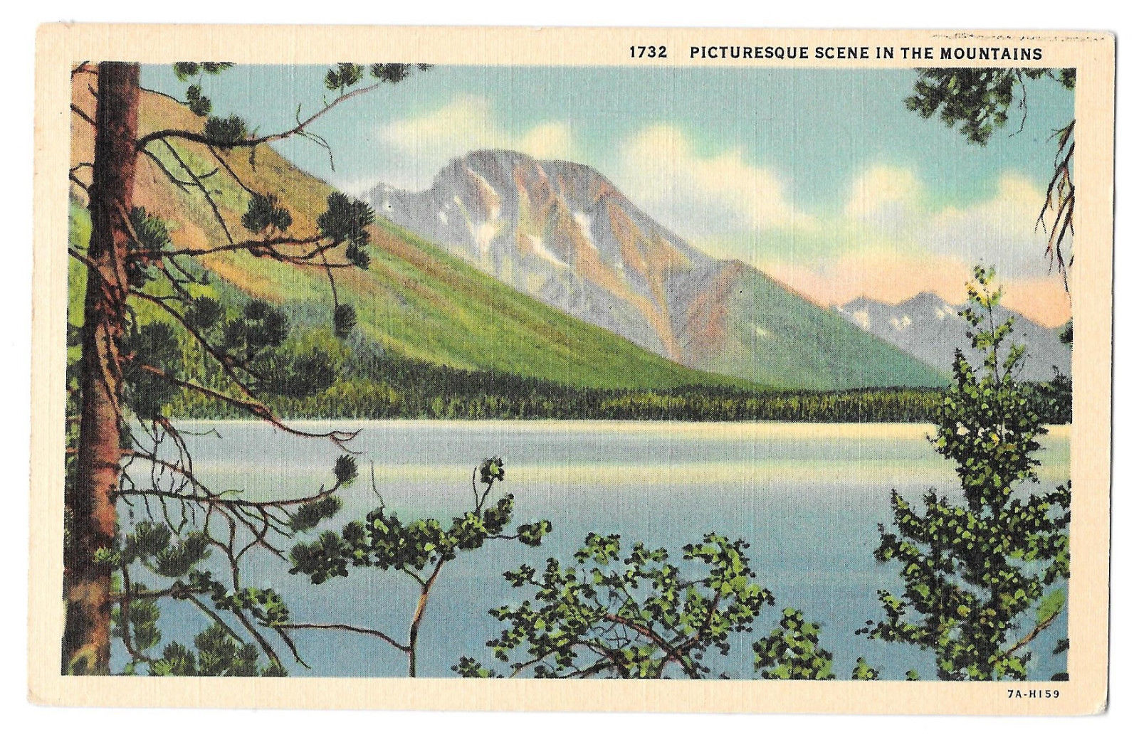 WA Picturesque Scene in the Mountains Vintage Linen Postcard Washington