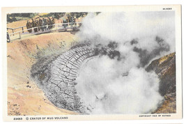 WY Yellowstone Park Crater of Mud Volcano Vtg Haynes Linen Postcard Wyoming - $4.74