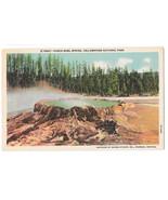 WY Yellowstone Punch Bowl Spring Vtg Haynes Linen Postcard Wyoming - $4.74