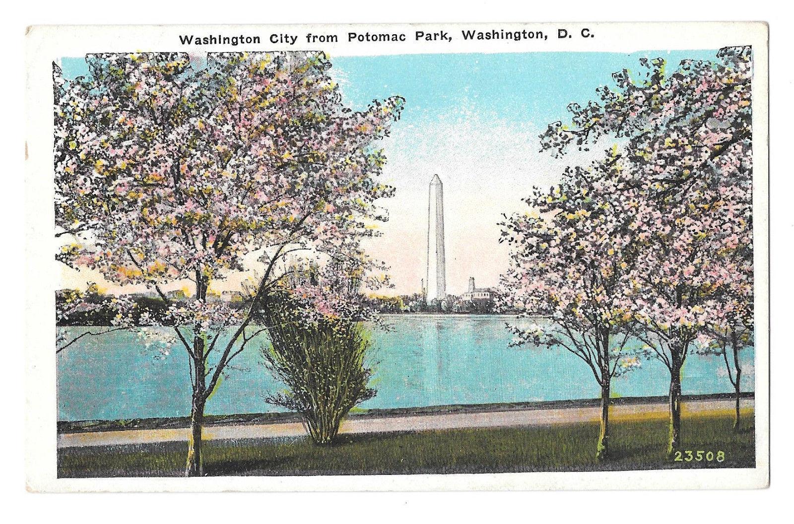 Washington DC Washington Monument Potomac Park Cherry Blossoms Vtg Postcard