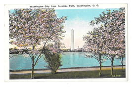 Washington DC Washington Monument Potomac Park Cherry Blossoms Vtg Postcard - $6.17