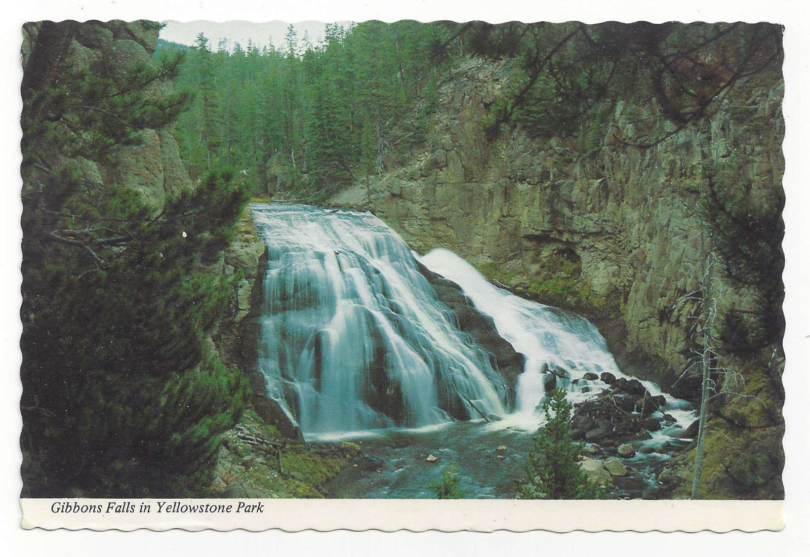 Yellowstone National Park Gibbons Falls Vtg 1975 Postcard 4X6 Mike Roberts