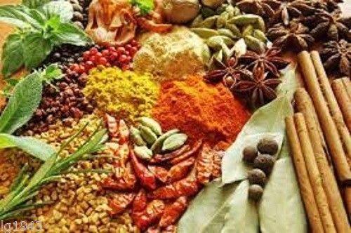 Lenier's Moroccan Grill Seasoning Rub 2oz Free Shipping
