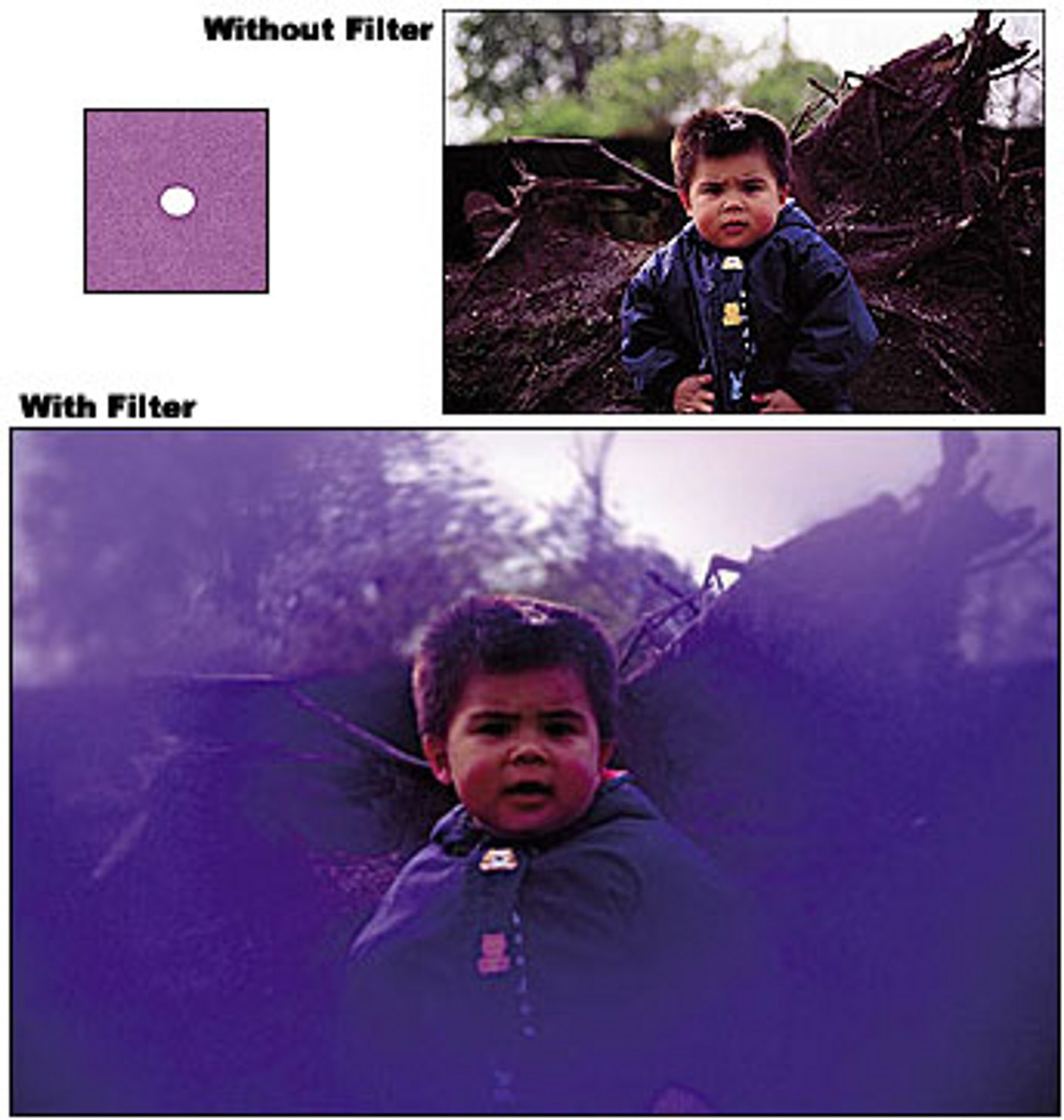 Primary image for COKIN 064 A064 Center Spot VIOLET FILTER for A Series Holder  Brand New