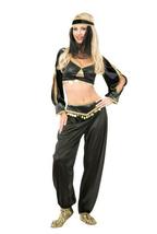 SEXY GENIE ADULT BLACK HALLOWEEN COSTUME SIZE MEDIUM 8-10 - $48.25