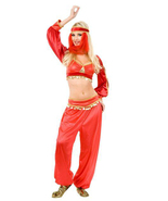 SEXY GENIE ADULT RED HALLOWEEN COSTUME SIZE X-LARGE 14-16 - $49.13