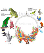 """Preen & Swing"" Bird Toy - Stimulates Healthy E... - $19.90 - $26.90"