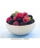 blackberry body spray mist - $5.00