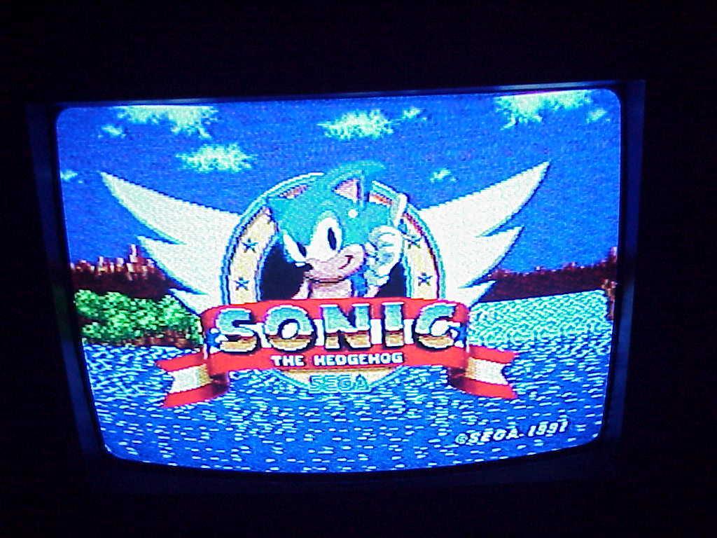 Sega Genesis Sonic the Hedge Hog 1 Not For Resale 16-Bit ...