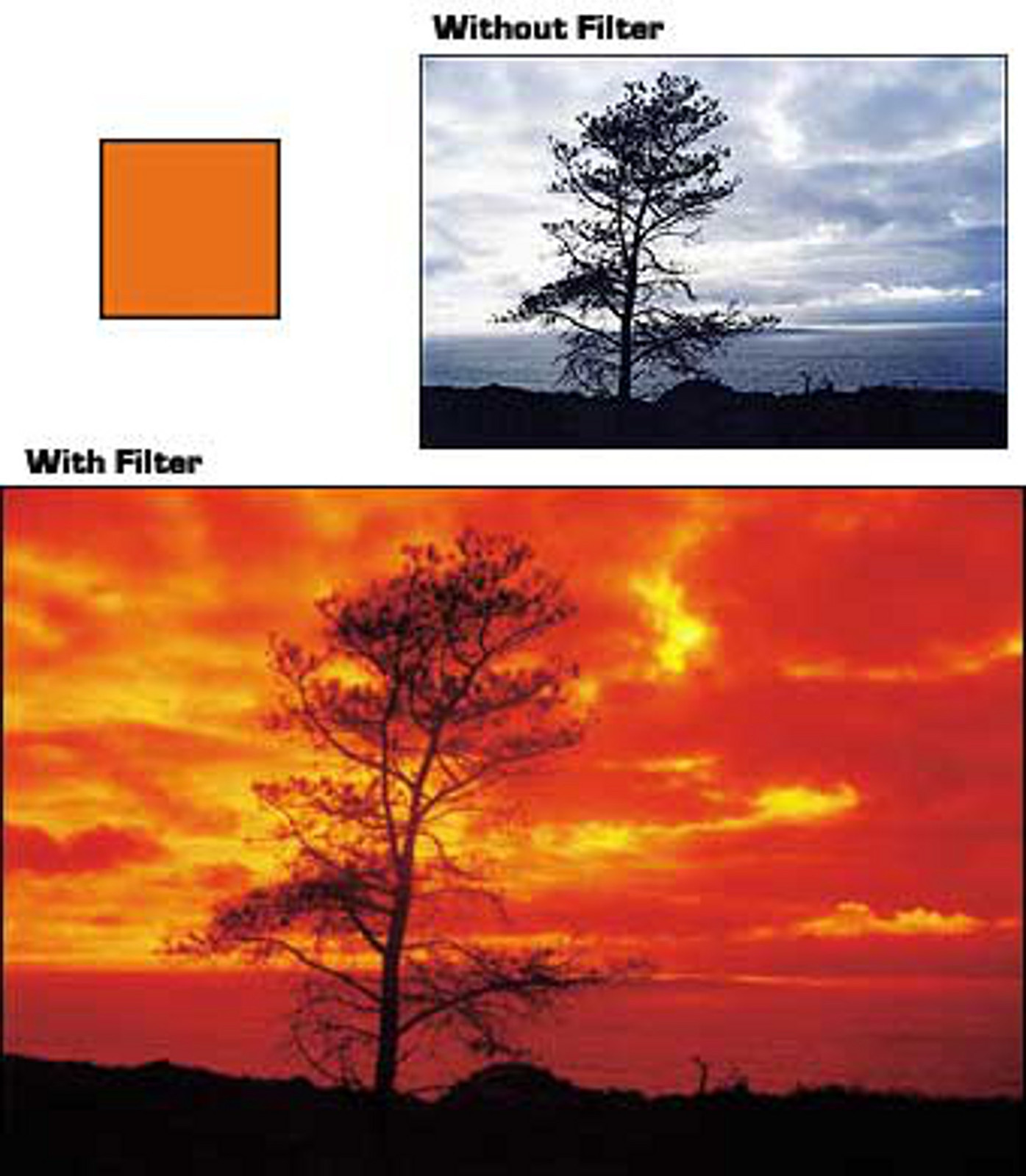 Primary image for COKIN 002 A002 ORANGE FILTER  for A series Holder New