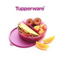 Tupperware Kids Divided Dish - €17,62 EUR