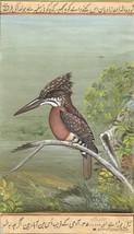 Giant Kingfisher Bird Painting Handmade Ornithology Nature Indian Miniat... - $89.99