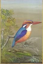 Little Kingfisher Bird Painting Handmade Ornithology Nature Indian Minia... - $89.99