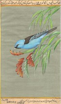 Blue Dacnis Bird Painting Rare Indian Miniature Wild Life Nature Handmad... - $104.99