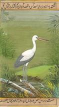 Indian Nature Miniature Painting Handmade Open Bill Stork Bird Watercolo... - $104.99
