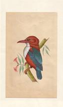 Kingfisher Bird Miniature Painting Handmade Watercolor Paper Ethnic Folk... - $69.99