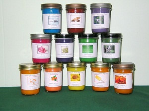 Bay Rum PURE SOY Jelly Jar Candle