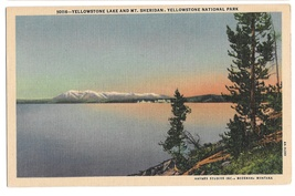 WY Yellowstone Lake and Mt Sheridan Vtg Haynes National Park Postcard  - $4.99