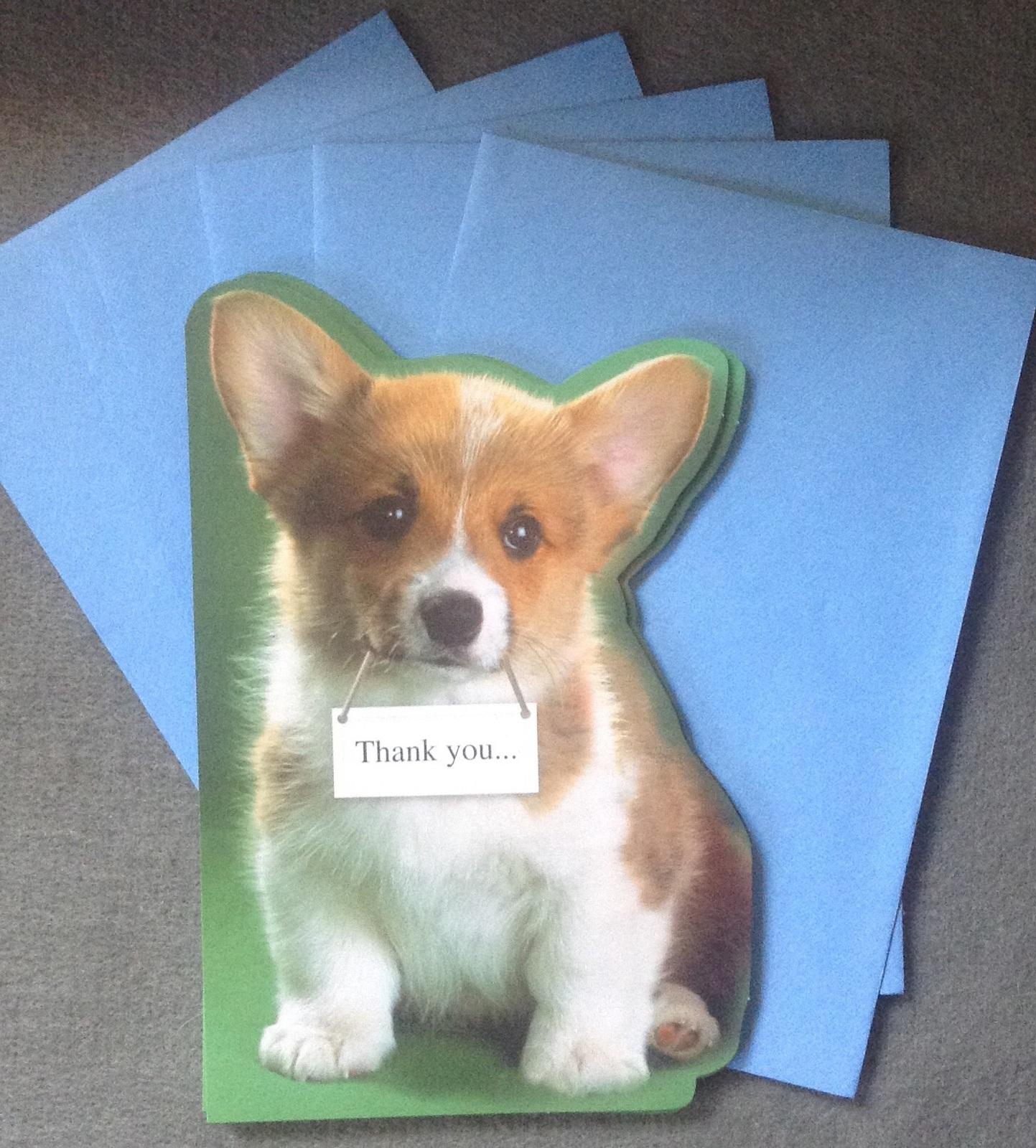 """Tri Color Corgi Puppy Moose the Corgi Instagram """"Thank you ...  Thank You Cute Corgi Puppy"""