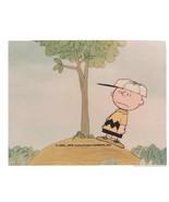 Peanuts  Charlie Brown Tree Comic Strip Vintage 8X10 Color TV Memorabili... - $6.99