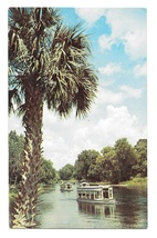 FL Silver Springs Glass Bottom Boats Silver River Vintage Florida Postcard - $4.99