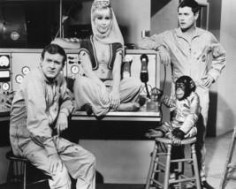 I Dream of Jeannie Barbara Eden MM95 Vintage 8X10 BW Comedy TV Memorabil... - $6.99