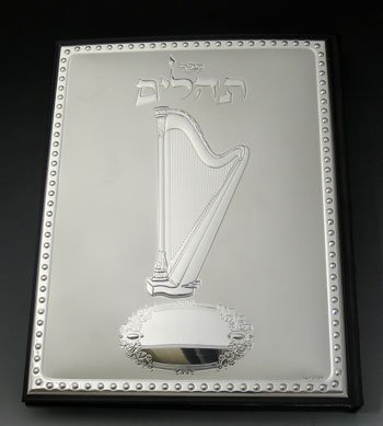 Primary image for Tehilim Leather & Sterling Silver Cover [Kitchen]
