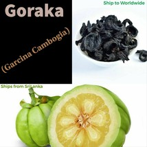 Ceylon Dried Goraka Garcinia Cambogia Medicine Weight Loss Food Cooking ... - $7.98+