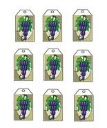Grapes3942-Digital Download-ClipArt-ArtClip-Digital - $4.00