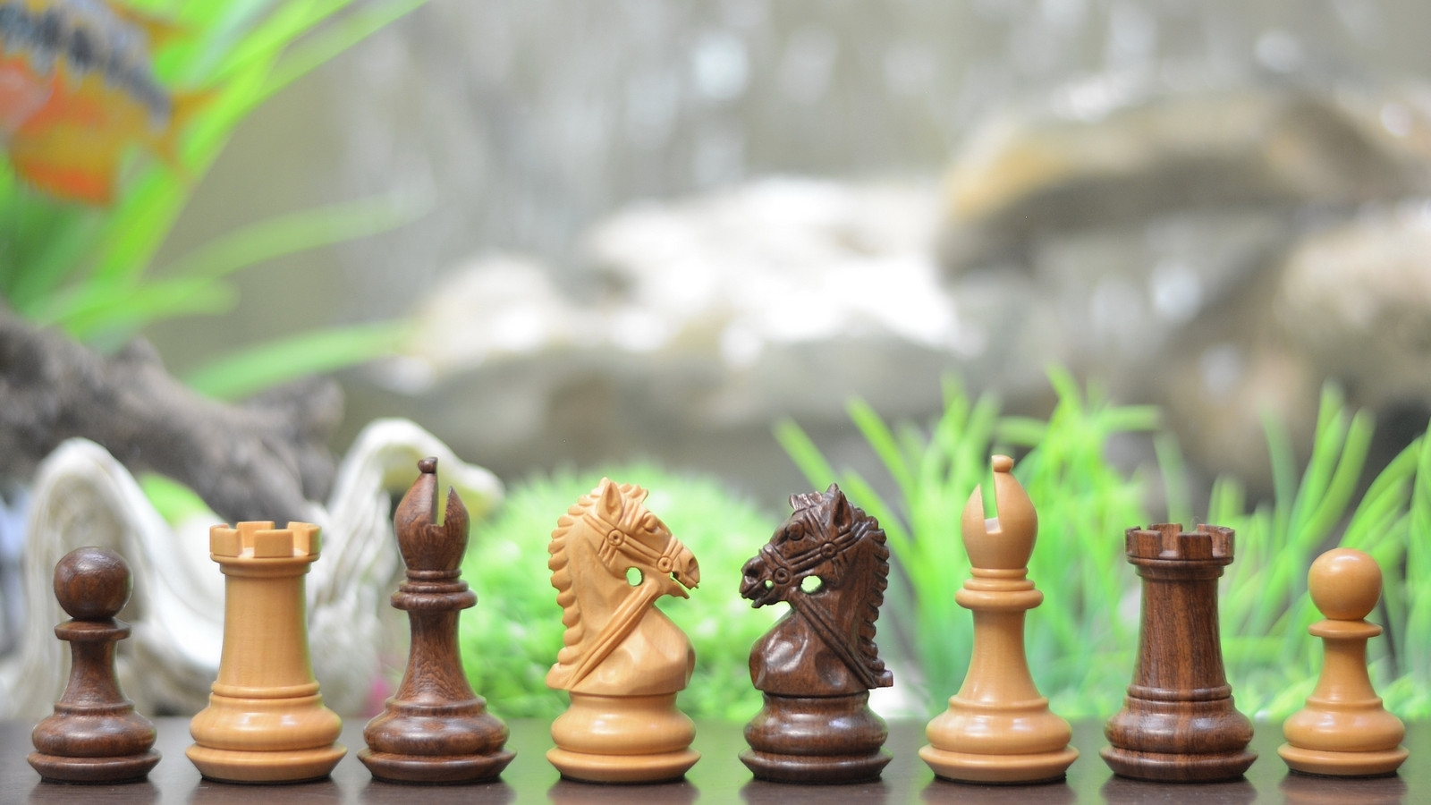 """Bridle Series Weighted Chess Pieces in Sheesham/Box Wood- 3.0"""" king - SKU: M0012"""