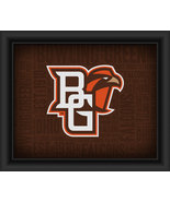Bowling Green State University Logo Plus Word Clouds -15 x 18 Framed Print - $49.95