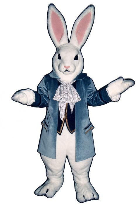 MADE TO ORDER PROFESSIONAL QUALITY PETER RABBIT MASCOT COSTUME