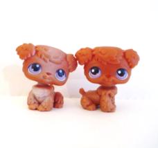 Littlest Pet Shop Puppy  37 39 Poodle Puppies Brown Purple Eyes LPS - $178,77 MXN