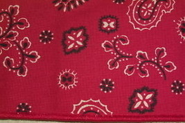 Longaberger Small Handle Tie  ~Backyard Bandana Fabric - $11.70