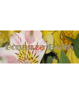 Customized Bonanza Booth or Website Banner Floral Background Design - $1.50